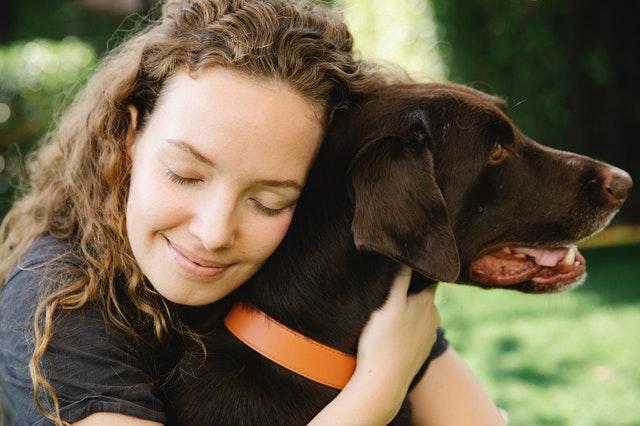 Pourquoi vous former à la communication animale va changer votre vision du monde