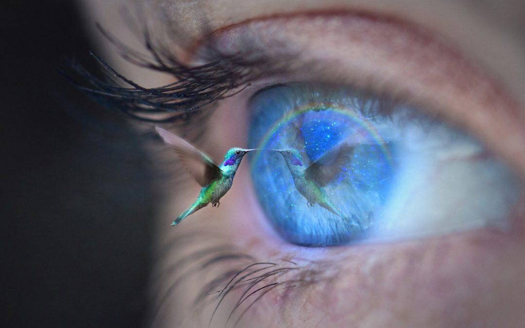 Formez-vous au massage du colibri et laissez la magie opérer